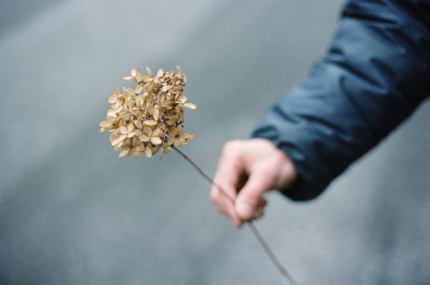 Photography by Alana Paterson 1