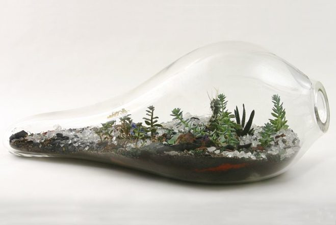 Giant-and-Living-Terrariums-by-Paula-Hayes-7