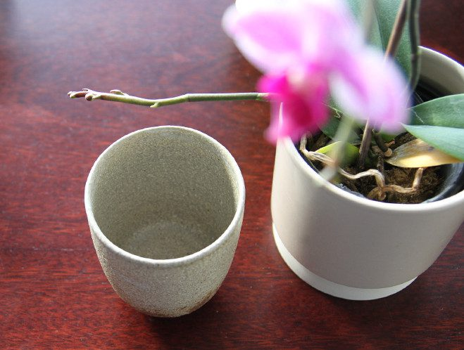 Derived from a Simple Stream - Water Cup by Stefan Andersson 5