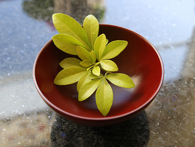 Natural Textures & Colours Lacquerware by Fujii Works at OEN Shop 5