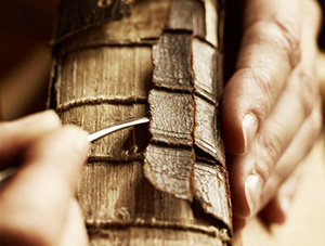 Craft,-Skills-&-Artisans---Photography-by-Andrew-Montgomery-thumb3