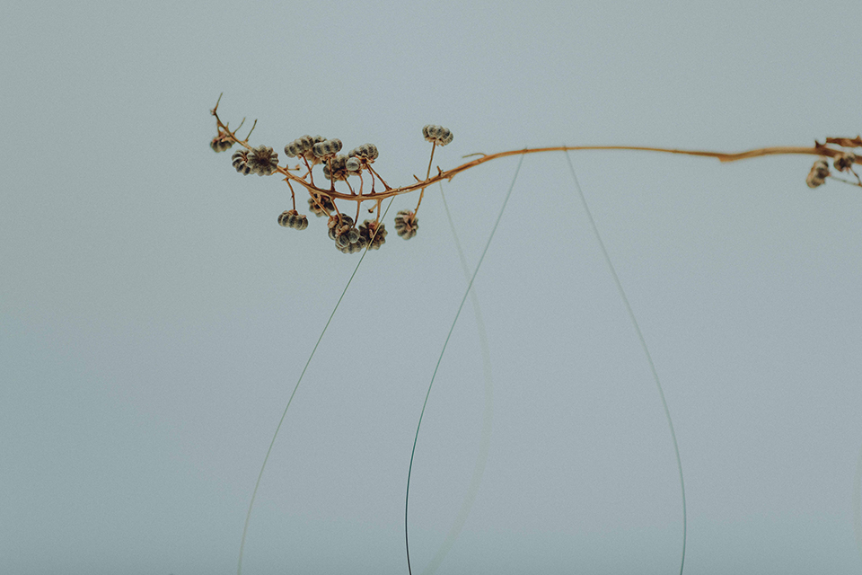 Suspended Wire Sculpture by Studio Note 12